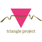triangle-project